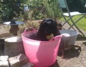 Lovely cool bath!