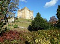 Guildford Castle in the November sunshine