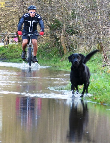 Splashing along the Towpath