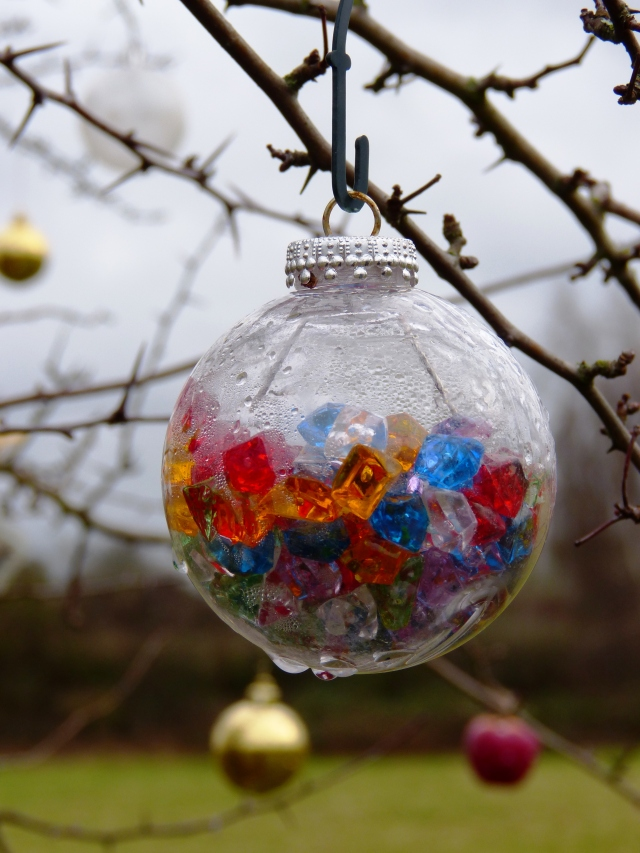 Interesting Bauble on the Desborough Island Pet Christmas Tree