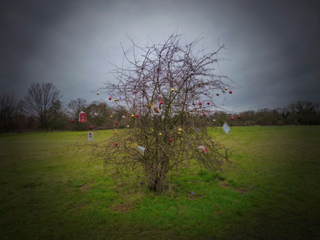 Pet Christmas Tree on Desborough island