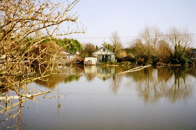 Houses near Walton Bridge, cut off by the flood waters