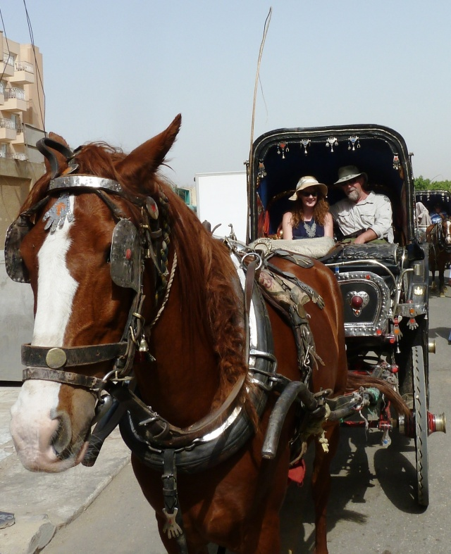 Carriage ride to Karnak Temple