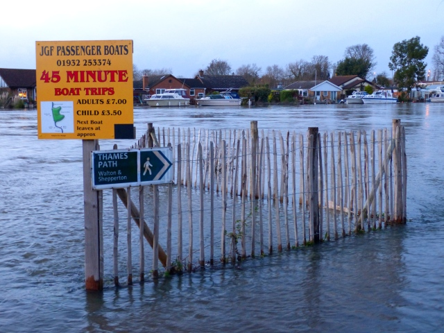 The Thames footpath is under water 7.1.2014