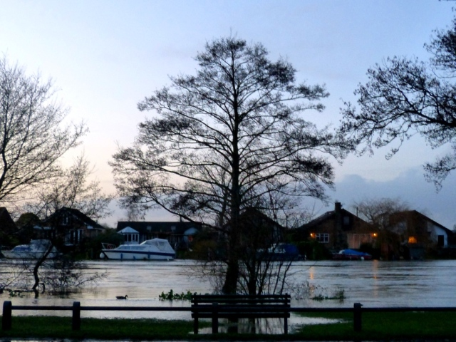 Flooding of the Thames at Walton 7.1.14