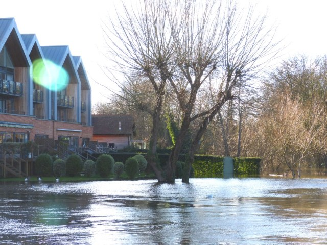 The river Wey joins the Thames here