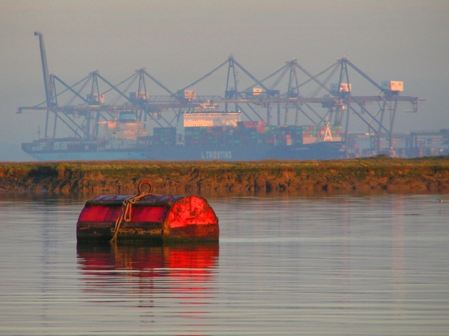 Sunrise on the Medway