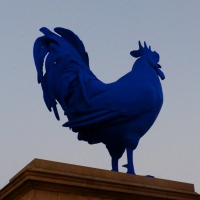Another Blue Monday: A Blue Chicken