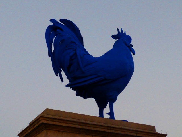 Blue Chicken