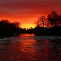 Under a Blood Red Sky......